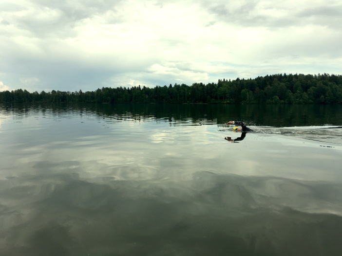 Antti ui Bodomilla